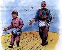 coc hik tohumlar 8