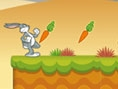 Buggs bunny ile havu� toplama