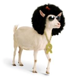 Ayşe Hanımın Keçileri